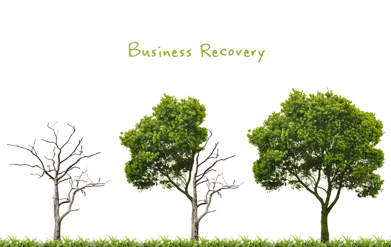 Business recovery support